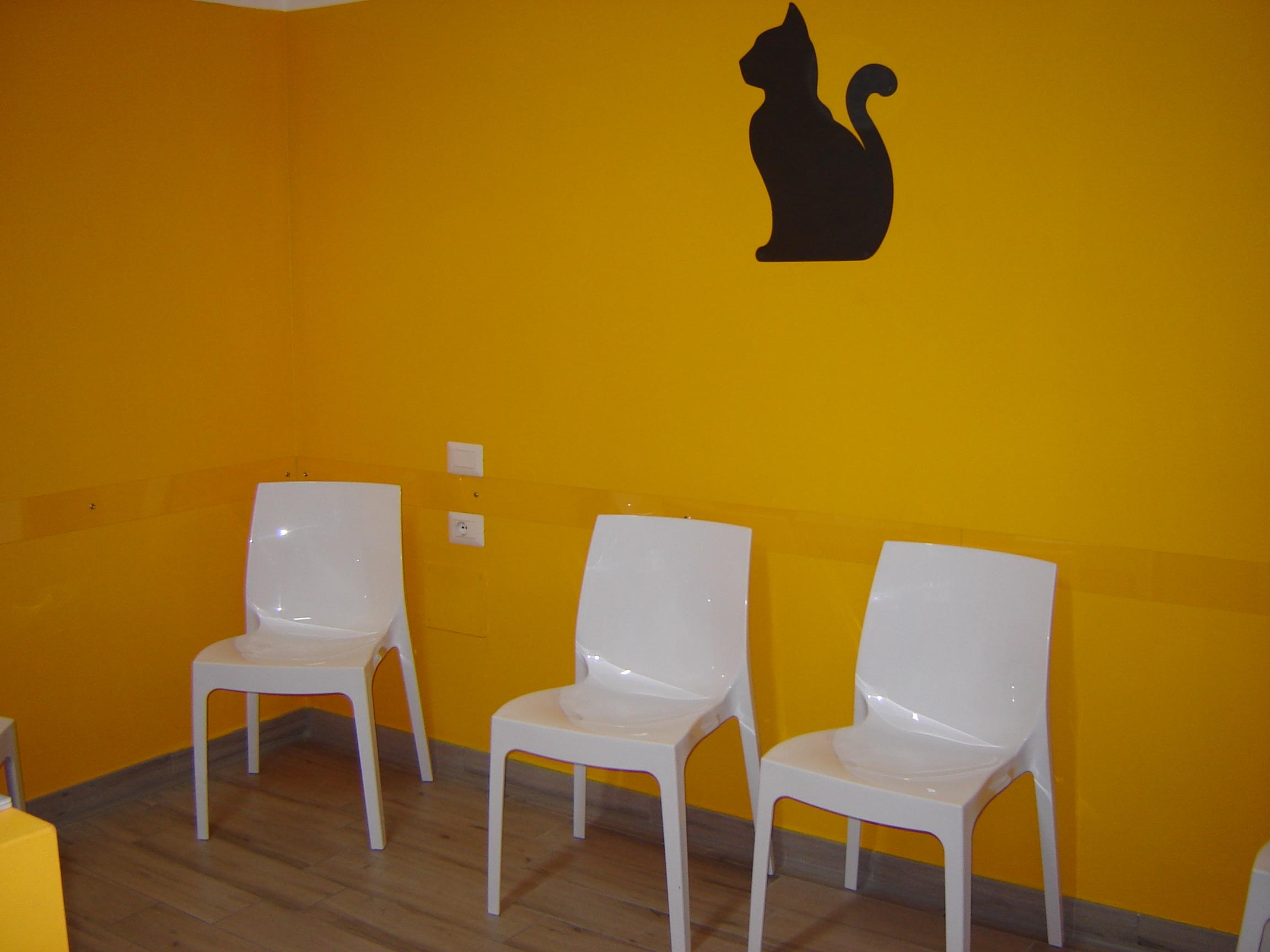sala_attesa_gatti